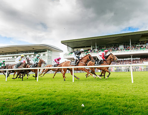 The Galway Races 2016